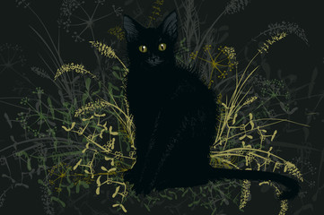 Black witch's cat is a Halloween.