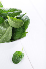 Fresh raw spinach in white bowl