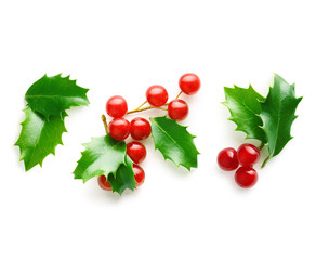 Holly berry leaves Christmas decoration