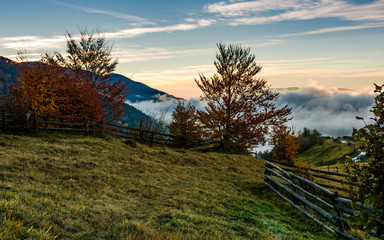 rural landscape at foggy sunrise in mountains