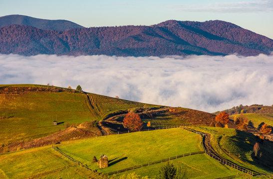 gorgeous morning in mountainous rural area