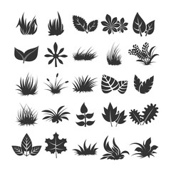 Leaves and grass silhouettes on white background