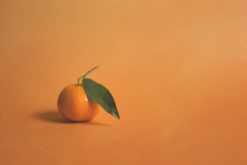 Clementine on orange...