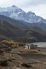 Villagers farming in the fields in Kagbeni, Mustang.