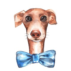 Dog sketch isolated on white background. Blue bow. Watercolor illustration.