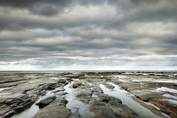 A rocky coastline at low tide
