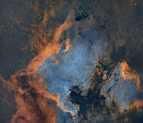 The North American and Pelican nebula