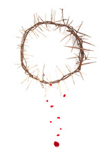 Crown of thorns isolated