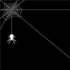 Banner spider web vector