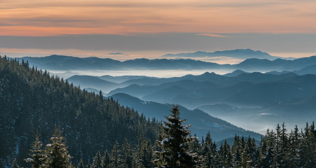 Dawn in the mountains covered with forest in the winter