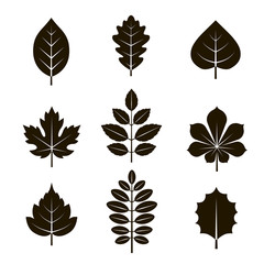 9 black and white leaf icons