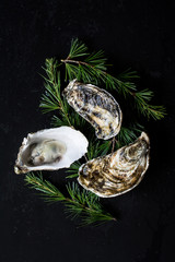 Three oysters on a black background