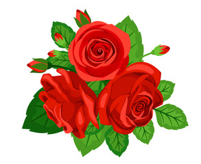 Bouquet of red roses with buds isolated on white background