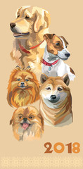 Postcard with dogs of different breeds-3