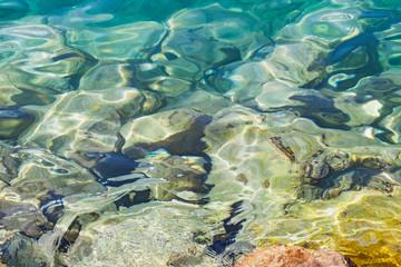 Seashore on summertime