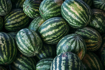 Group of big sweet green watermelons