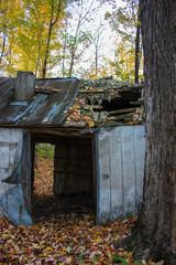 old barn in the woods in fall season