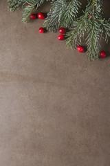 Christmas tree branch cranberries. Dark gray stone background.