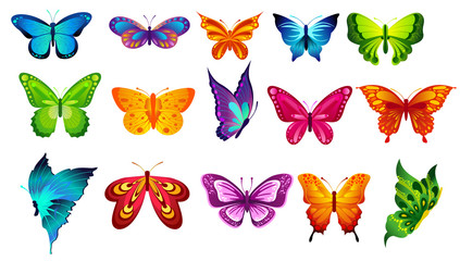 Vector illustration of bright colors butterflies isolated on white background in flat style.