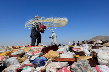 An Afghan man prepares to burn a pile of illegal narcotics on the outskirts of Jalalabad