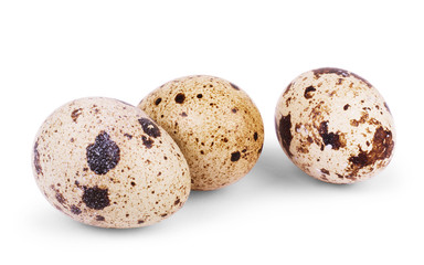 Quail egg on a white background