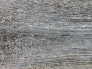 Macro photo - texture of gray old wooden boards