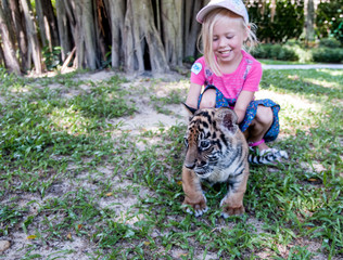 small hand tiger cub and girl