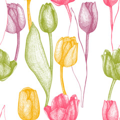 Seamless vector tulip pattern. Spring vintage background with hand drawn tulips and butterflies