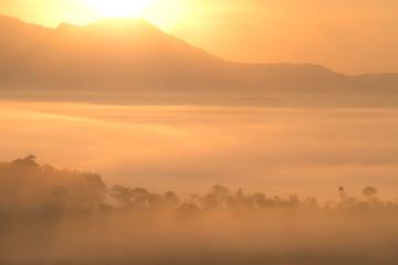 Misty morning sunrise view at Thung Salang Luang National Park Phetchabun,Thailand