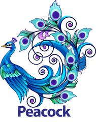Vector illustration, modification peacock
