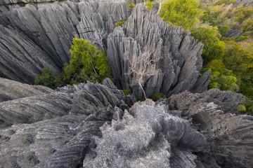 Kalksteinformation im Nationalpark Tsingy de Bemaraha