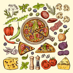 Slices of pizza with cheeses, olives and other ingredients. Vector hand drawn illustrations