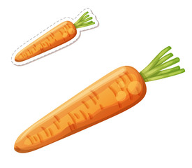 Whole carrot icon isolated on white background. Cartoon vector illustration. Series of food and drink and ingredients for cooking