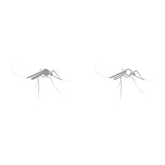 Mosquito it is black icon .