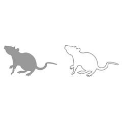 Rat it is black icon .