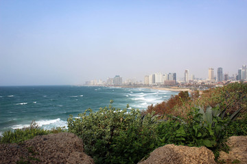 Mediterranean Sea coast of Tel Aviv, Israel