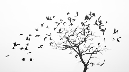 Birds fly from the tree like leaves by the wind
