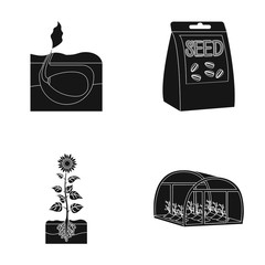 Company, ecology, and other web icon in black style. Husks, fines, garden icons in set collection.