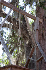 Hangman's noose under a live oak tree