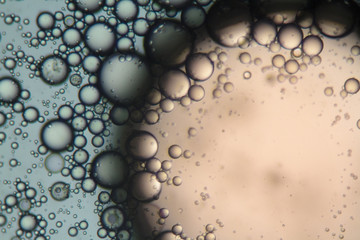Mixture of soap and oil viewed under the microscope.