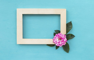 Pink rose with wooden frame on blue background