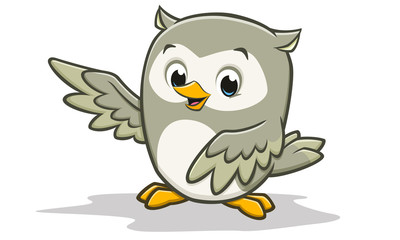 Cartoon Baby Owl