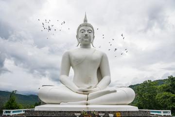 Outdoor large white Buddha Image Buddhist temple