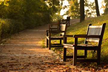 Autumn road with benches in the city park at sunrise. Brno czech republic.