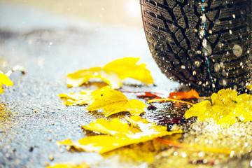 Rutschgefahr im Herbst