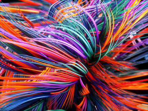 Colorful Trails