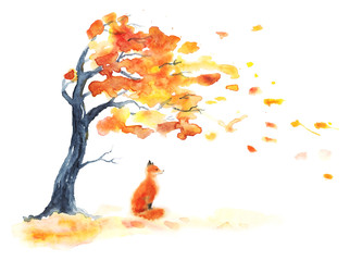 Watercolor autumn tree with yellow and orange leaves and red fluffy cute fox on white. Leaf fall with wind on white. Little sitting foxy. Hand drawing illustration.
