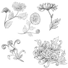 Flowers. Set of vector images. Abstract wallpaper with floral motifs.  Wallpaper.  Use printed materials, signs, posters, postcards, packaging.