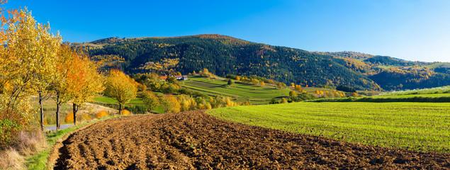 Hrinova autumn beautiful Slovakia countryside  landscape traditional agriculture farming