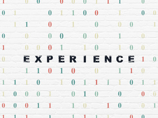 Business concept: Experience on wall background